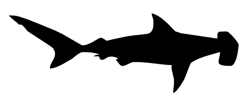 854x354 Hammerhead Shark Silhouette 2 Decal Sticker
