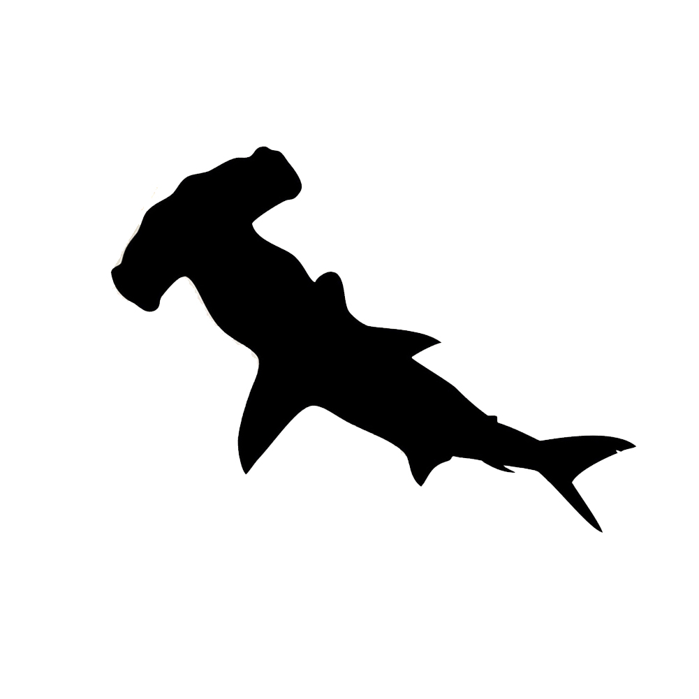 1001x1001 Shark Silhouette Vinyl Sticker Car Decal