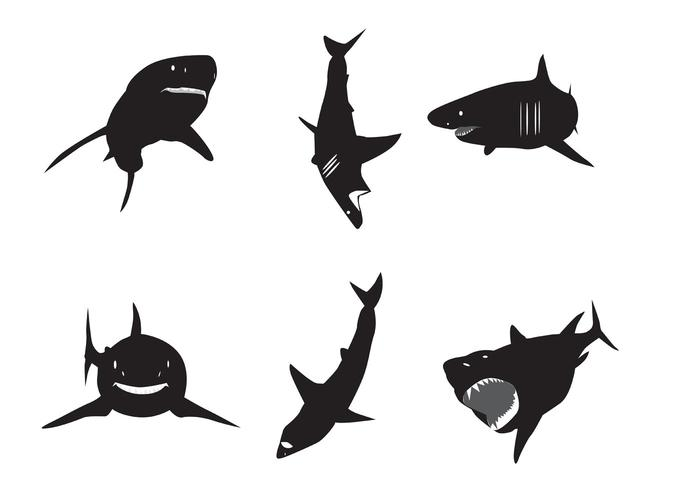 700x490 Shark Free Vector Art