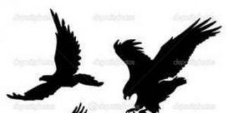 324x160 Eagle Tattoos