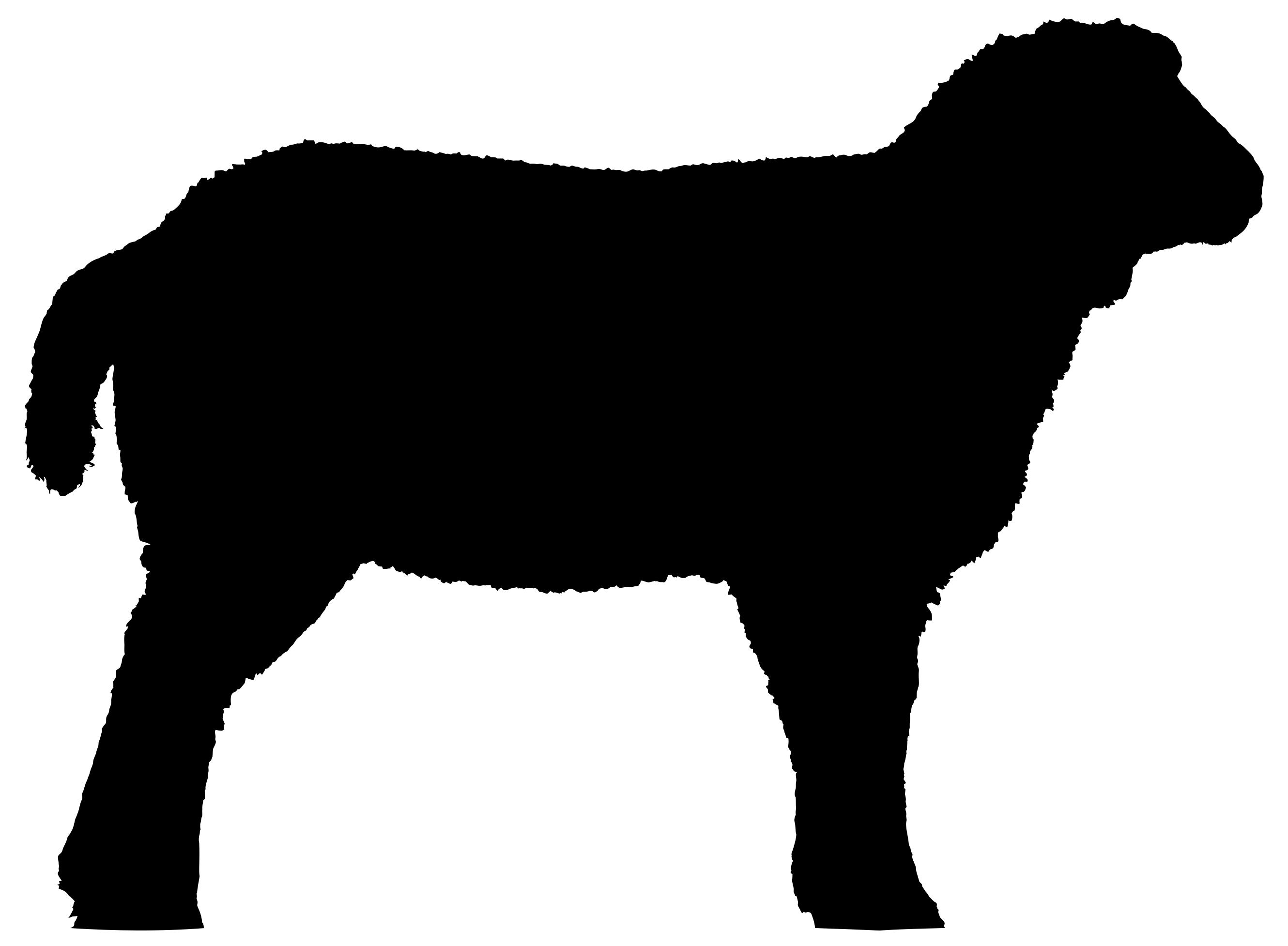 2660x1954 Detailed Sheep Silhouette Clipart