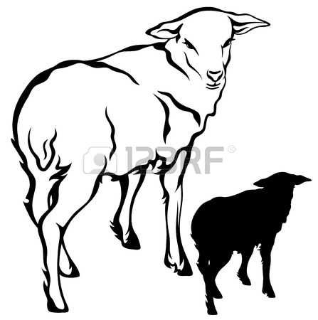 447x450 Sheep Silhouette Stock Vector Illustration And Royalty Free Sheep