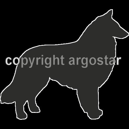 448x448 Belgian Sheepdog Groenendael Shop