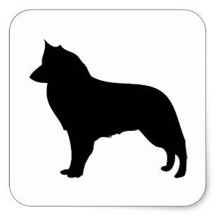 307x307 Belgian Sheepdog Silhouette Stickers Zazzle