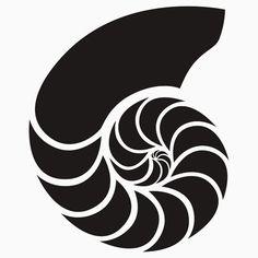 236x236 Shell Nautilus De Vida Marinha Para Ouvir O Som Do Mar Para
