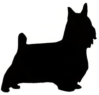 394x379 Scottish Terrier