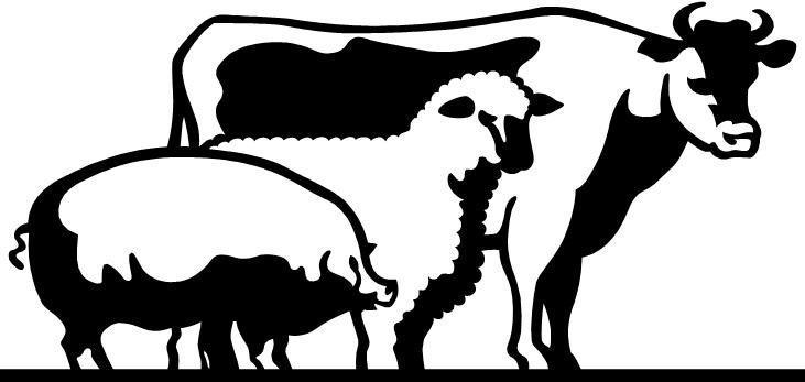 731x347 Livestock Show Clipart