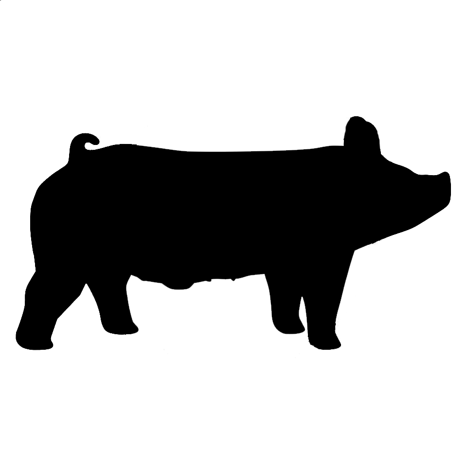 960x960 Black And White Show Pig Clipart