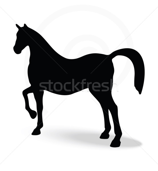 553x600 Silhouette In Show Horse Pose Vector Illustration Benguhan