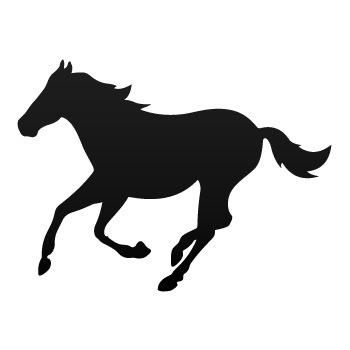350x350 Personalised Name With Showjumping Horse Decal Fun Funky Wall