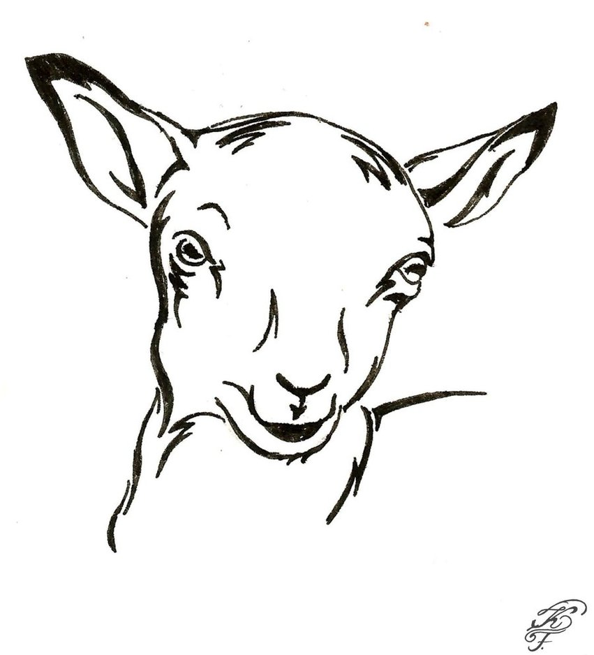 851x938 Ovis Aries Lamb Silhouette By Speedyart