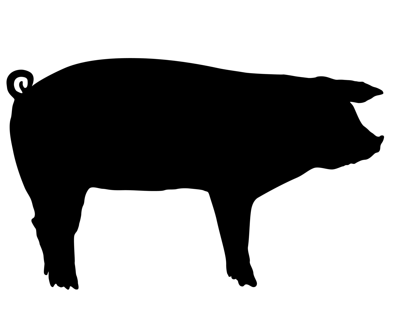 3000x2400 Show Pig Silhouette Clip Art Farm Animals Stencil Vinyl