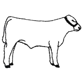 350x350 Show Steer Outline Embroidery Design Annthegran
