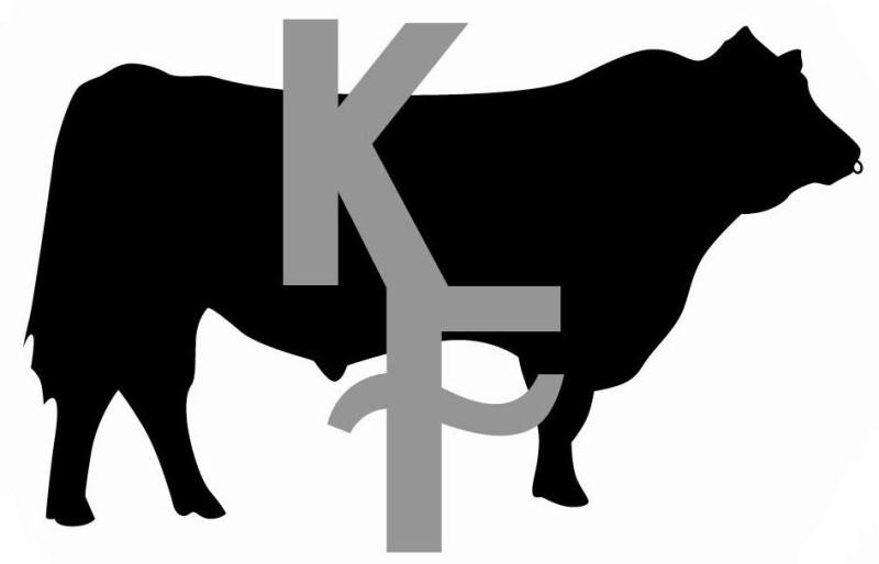 800x514 Show Cattle Clip Art