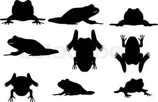 320x206 Frog Silhouette On White Background, Vector Illustration Stock