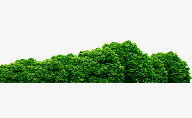 650x400 Bush Png, Vectors, Psd, And Clipart For Free Download Pngtree