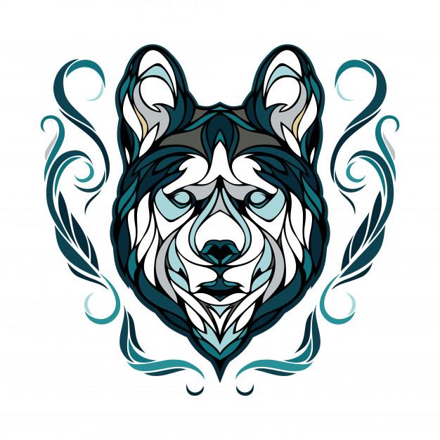 626x626 Siberian Husky Vector Premium Download