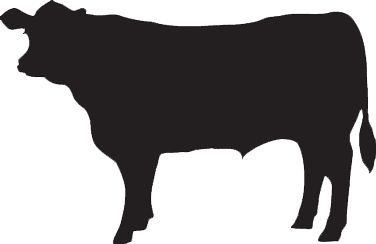 376x244 Cow Silhouette Svg Clipart