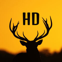 246x246 Silhouette Wallpapers Hd Best Backgrounds Ideas On The App Store