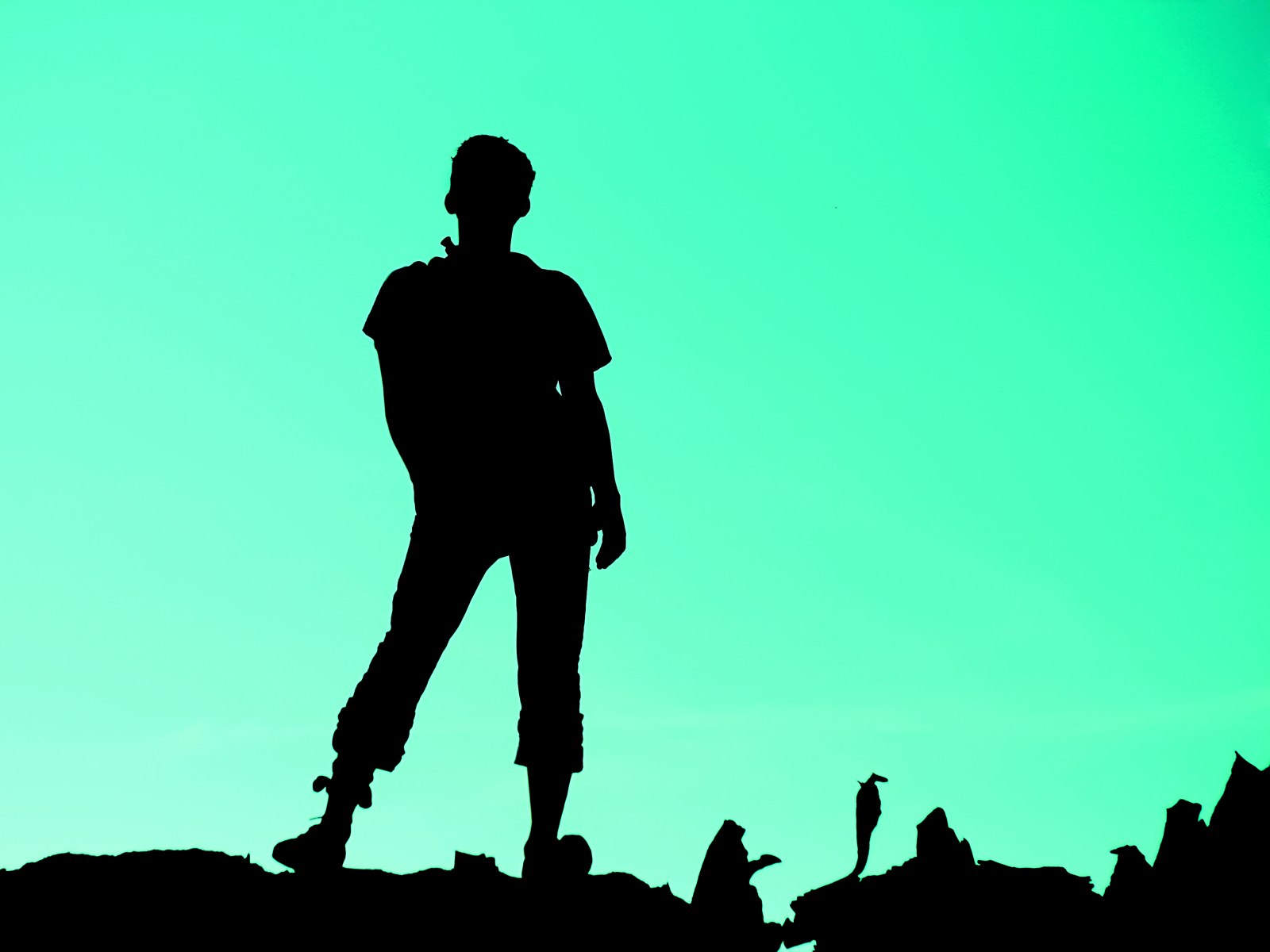 1600x1200 Stock Silhouette Person Ppt Backgrounds 1024x768 Resolutions