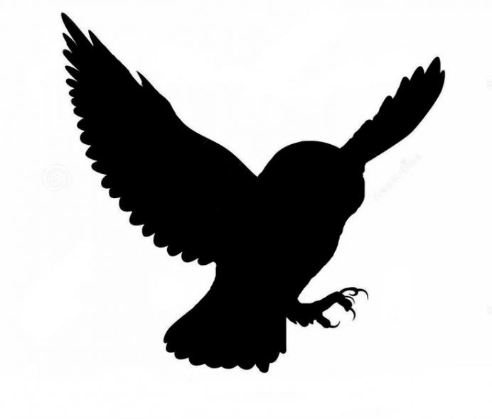 692x590 Owl Silhouette By Thatdarnkitty More (Marvelous Barn Owl