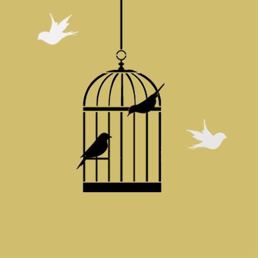 502x502 Bird Cage Stencil Bird Cage Decor Painting Stencil Wall