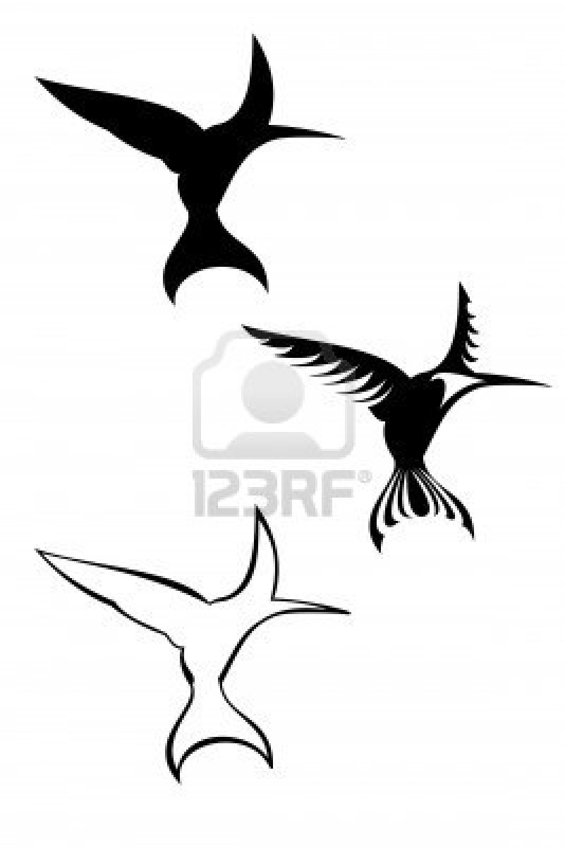 801x1200 Tattoos Of Humming Bird Tribal Humming Bird Tattoos