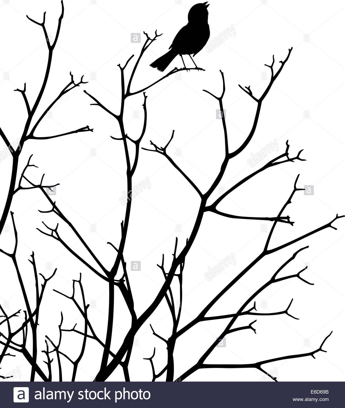 1174x1390 Bird Silhouette Vector Art