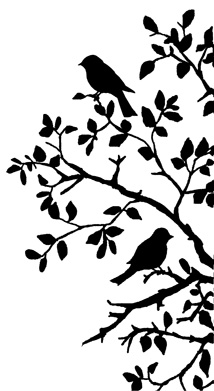 Silhouette Birds On Branch