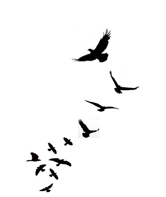 Silhouette Birds Tattoo