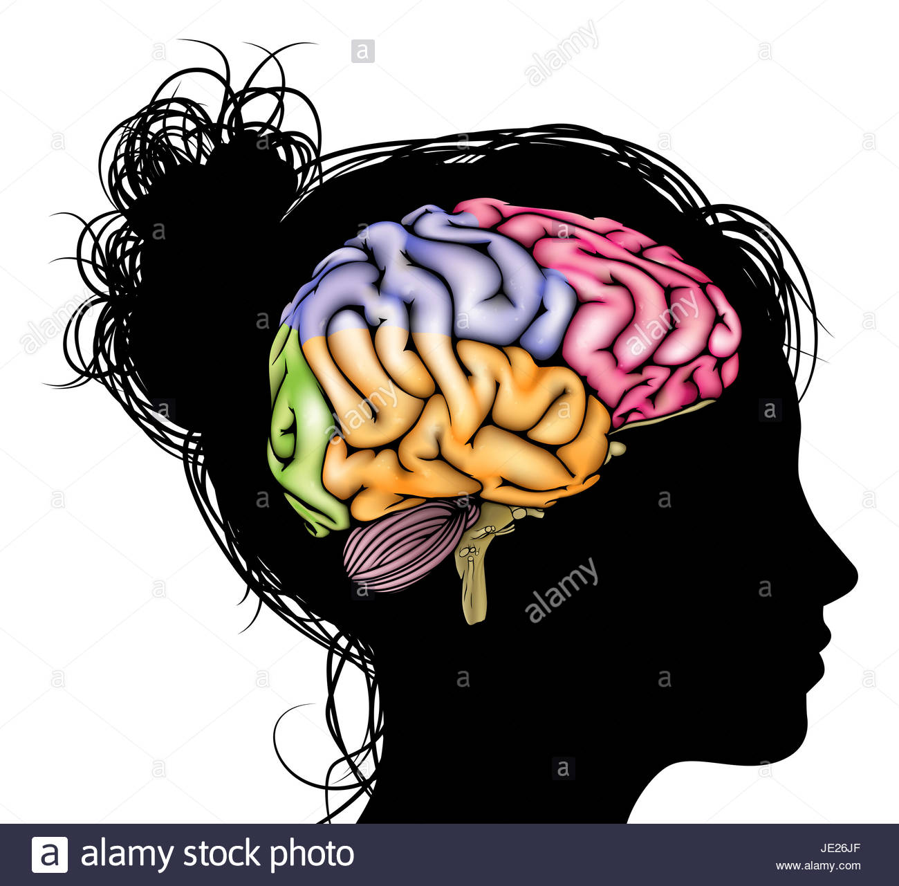 Silhouette Brain