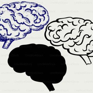 300x300 Brains Clip Art Etsy