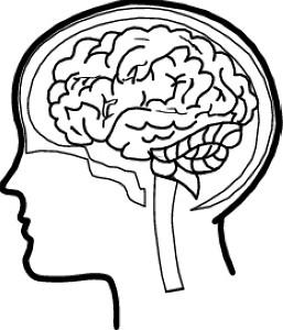 257x300 Brain Silhouette