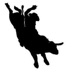 236x244 Bull Rider Art Ideas Bull Bull