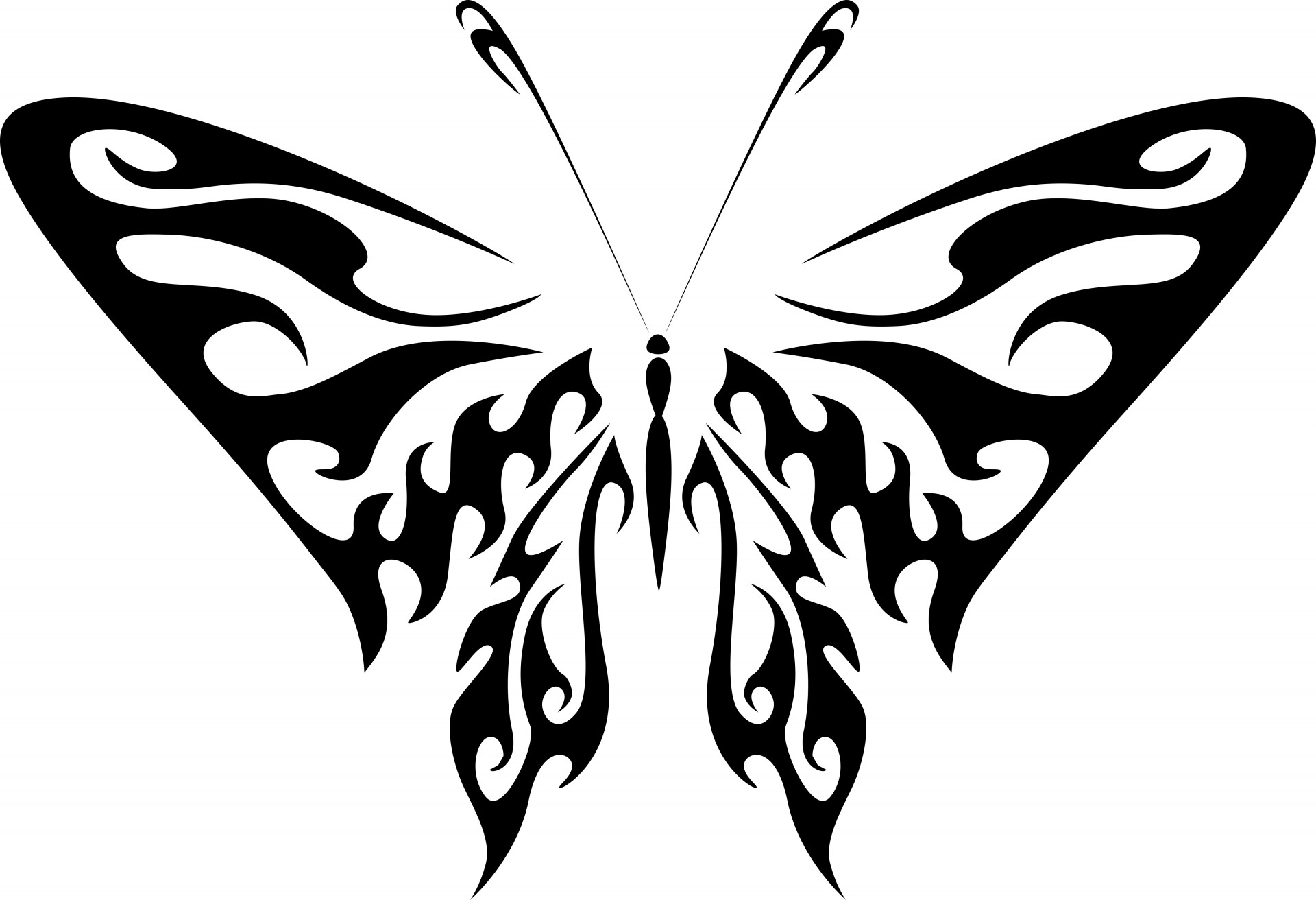 1920x1312 Silhouette Of A Butterfly Free Stock Photo
