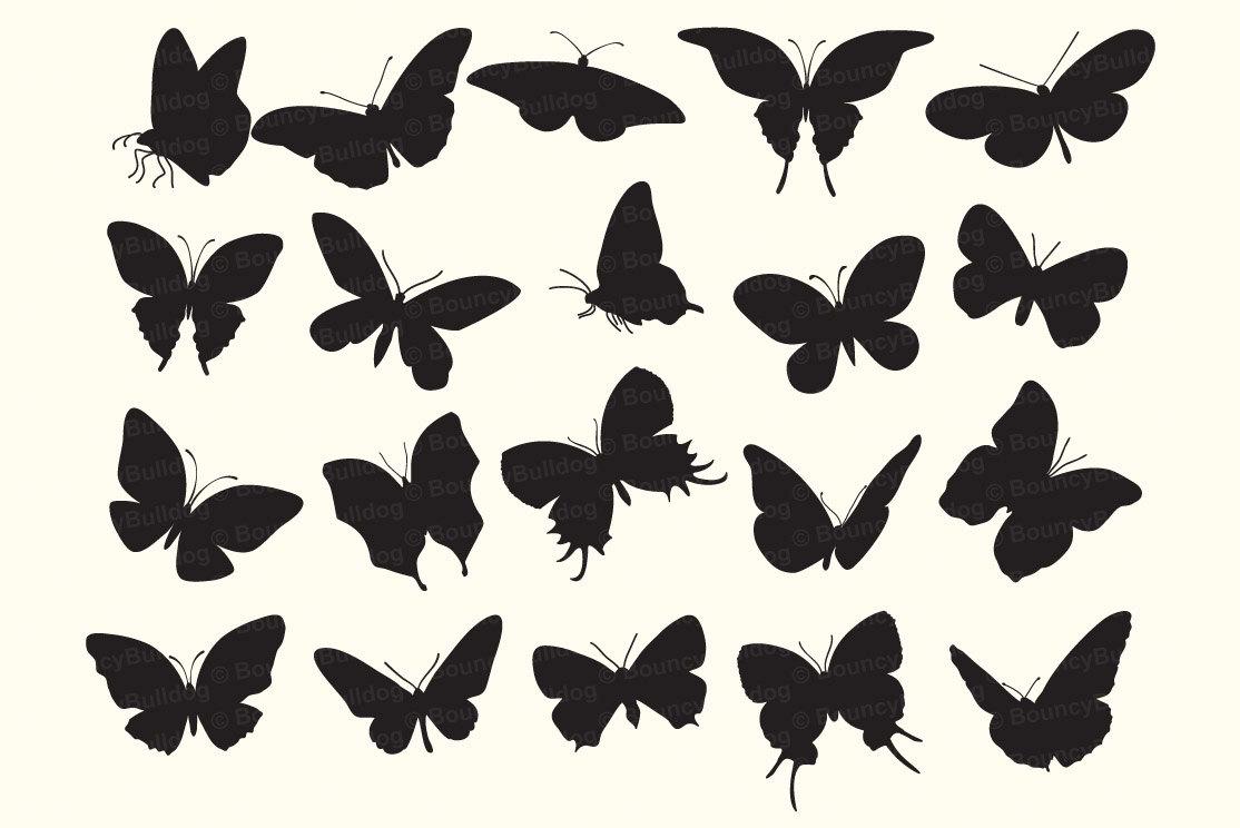 1114x744 Butterfly Silhouettes Digital Butterflies Vector Eps Butterfly