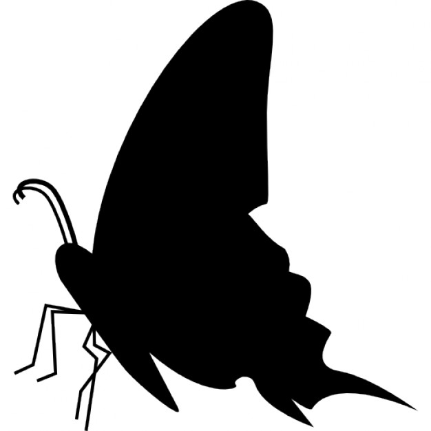 626x626 Butterfly Black Side View Silhouette Icons Free Download