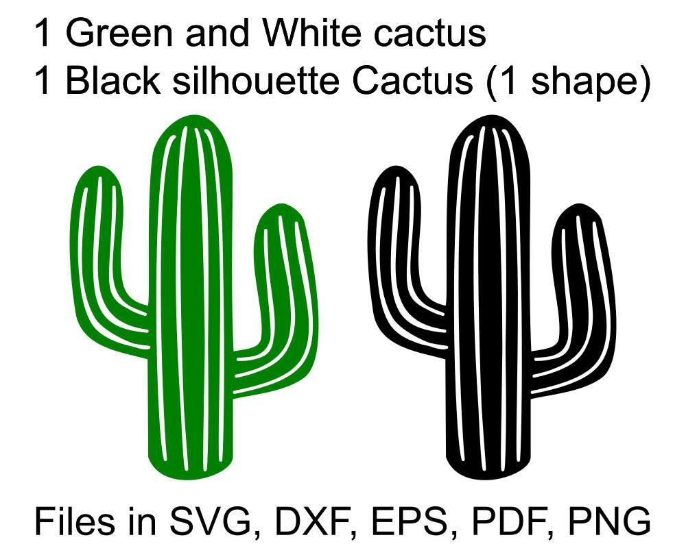 1000x794 Cactus Svg