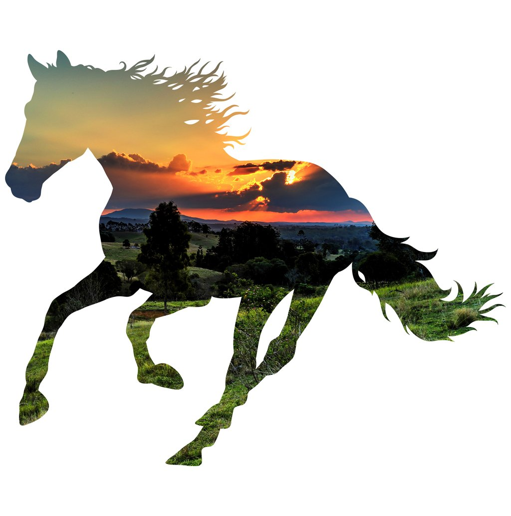 1024x1034 Horse Silhouette Valley Background Image Large Wall Decals Let'S