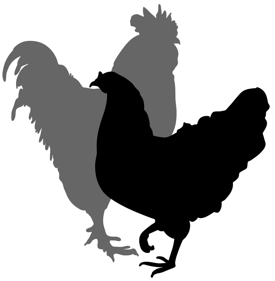1128x1152 Filerooster And Hen Silhouette 02.svg Cricut Hens
