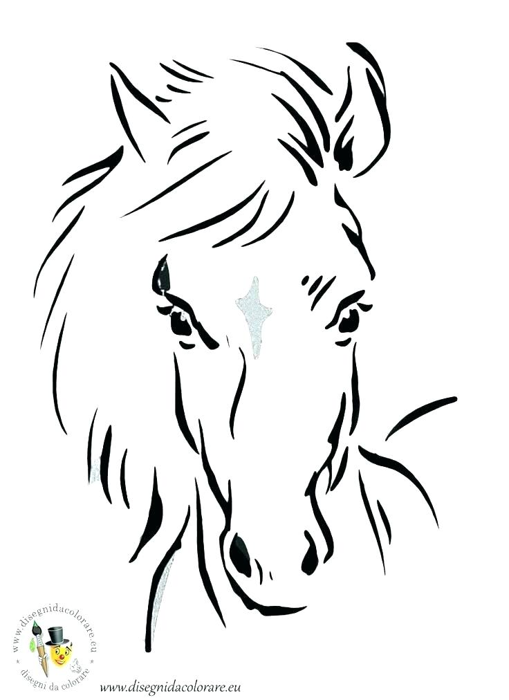 736x1012 Horse Head Coloring Page Horse Head Coloring Page Horse Head