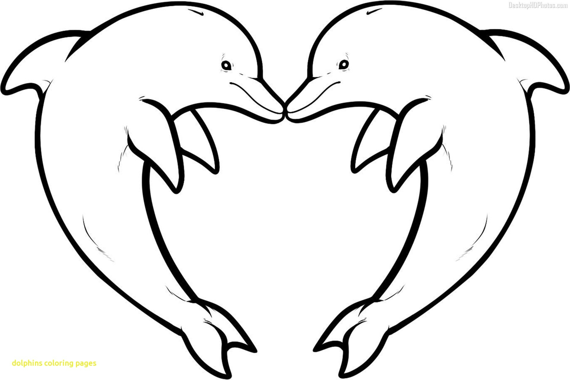 1920x1280 Monumental Printable Dolphin Pictures Free Clipart Coloring Pages