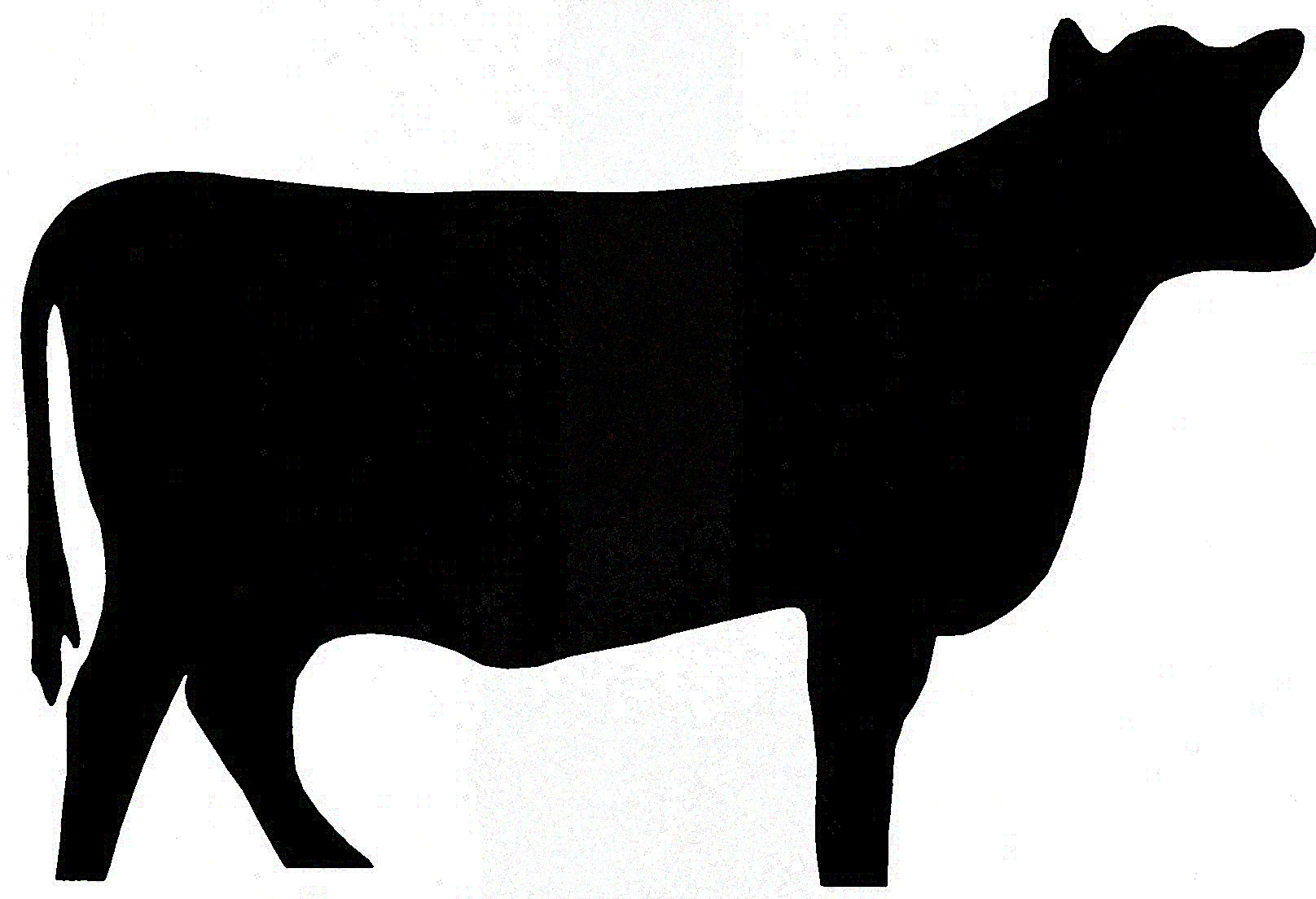 Silhouette Cow