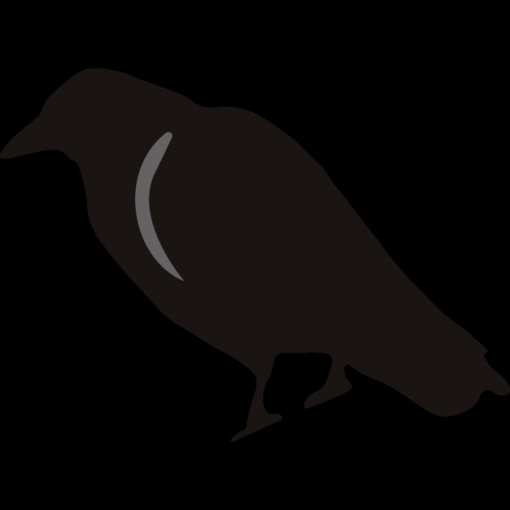 1000x1000 Crow Clipart Birds And Clip Art Photo Crowclipart Clipart