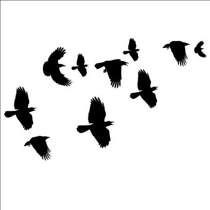 430x430 Crow Clipart Flying