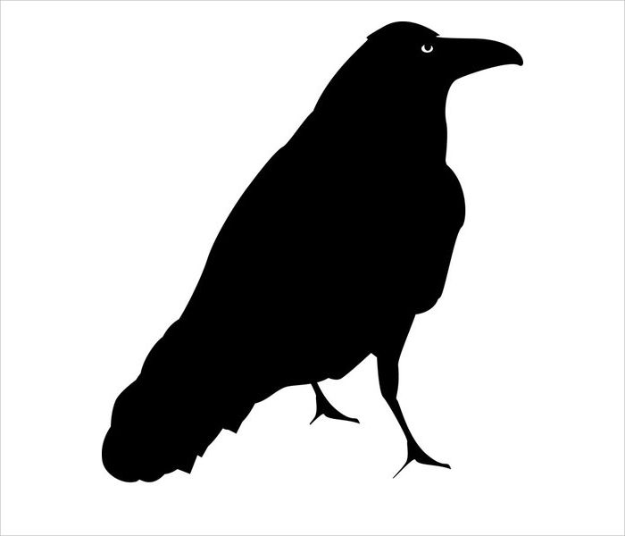 700x600 9 Crow Silhouette Designs