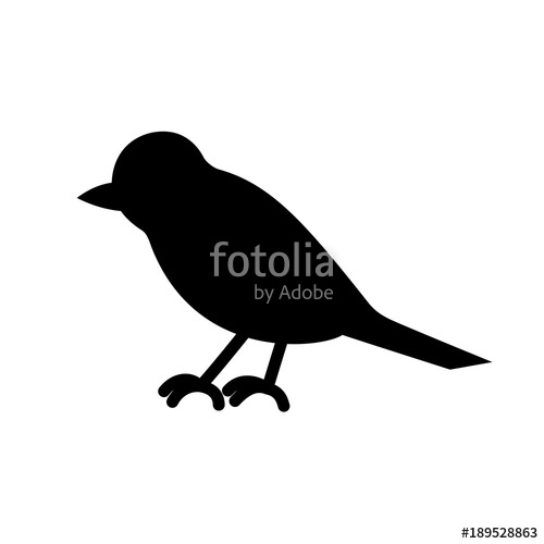 500x500 The Bird Is Black And White. Silhouette Of Magpies, Crows, Crow
