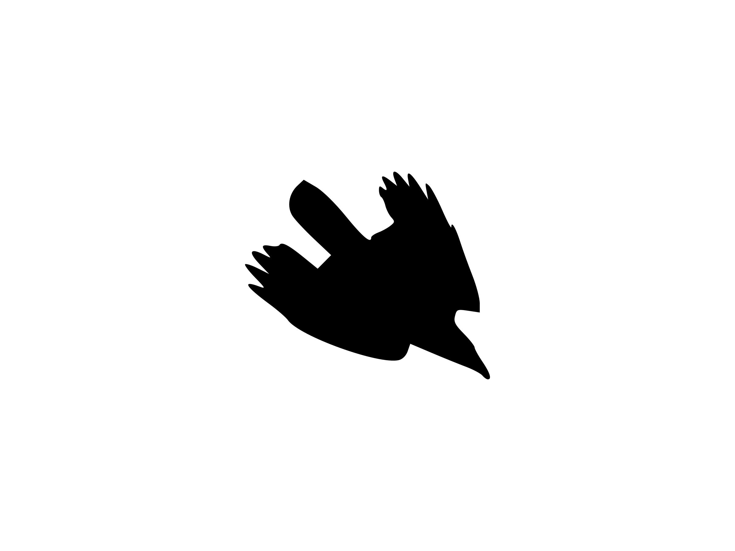 2400x1800 Diving Crow Silhouette Icons Png