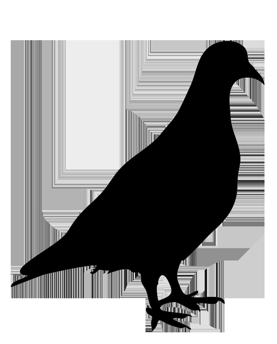 952x1181 Bird Silhouettes
