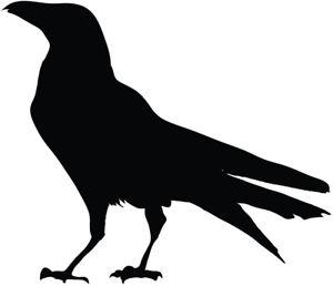 300x258 Black Bird Silhouette Vinyl Decal Sticker Raven Crow Birds Ebay